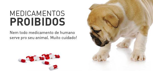 Saiba Quais Sao Os Medicamentos Proibidos Para Cães E Gatos